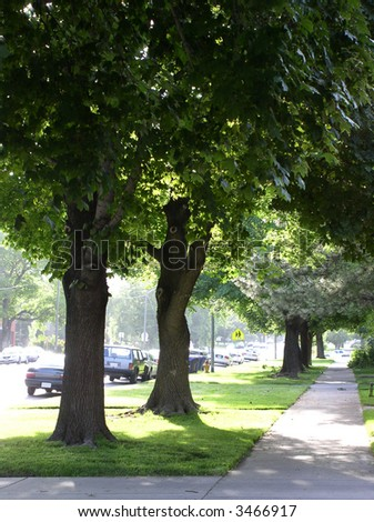 city street landscaped with trees and grass - stock photo