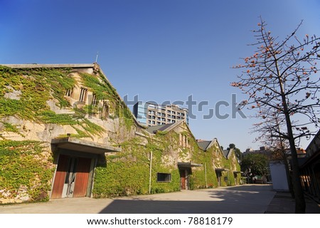 City street with green house with ivies under blue sky in daytime in Huashan Creative Park, Taipei, Taiwan, Asia. - stock photo