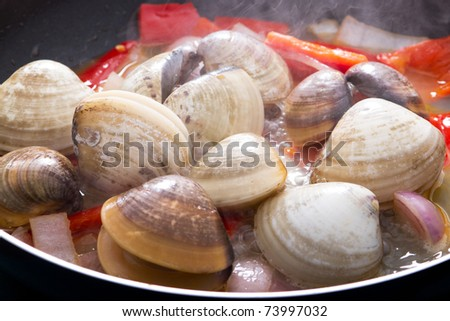 clams cooking in pan - stock photo