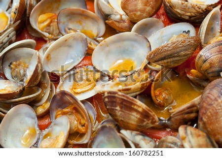 Clams in marinara sauce with tomatoes and oil - stock photo