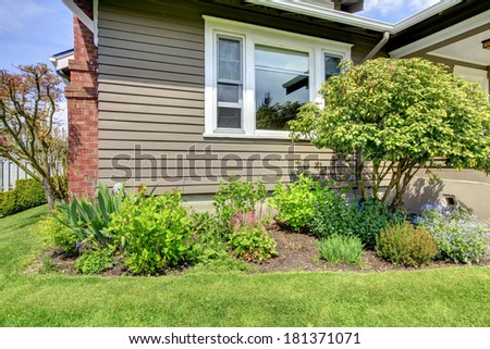 Clapboard siding house wall with white window. View of flower bed with decorative small tree