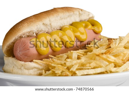 Classic American hot dog with mustard and fries - stock photo