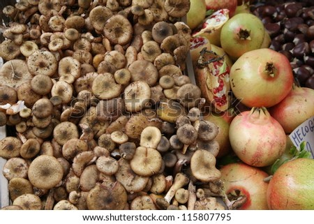 classic autumn fruits with mushrooms and chestnuts and pomegranates ripe - stock photo