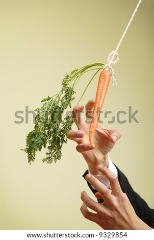 Classic business metaphor of carrot on a stick - stock photo