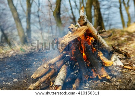 Classic camping campfire on open ground in a spring forest. Natural wood - stock photo