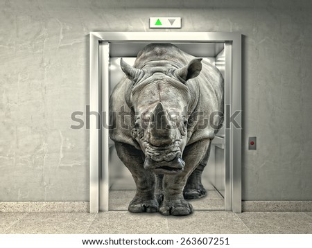 classic elevator and wild rhino - stock photo
