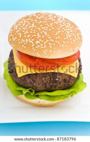 Classic Hamburger with cheese tomato and salad on dishware - stock photo