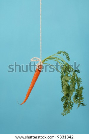 Classic motivational tool of carrot on a stick hanging in mid-air