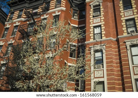 Classic old apartment building and blooming cherry tree, New York City - stock photo