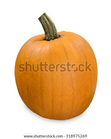 Classic pumpkin - stock photo