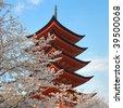 Classic Shinto Pagoda with full blossom cherry trees at Miyakojima, Japan. - stock photo