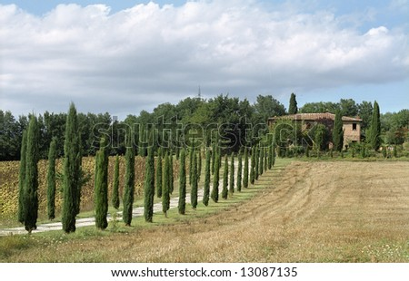 Classic tuscan farmhouse at the background, Italy - stock photo