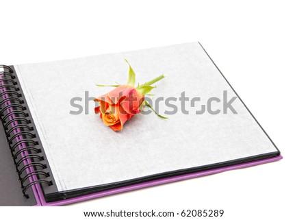 classic violet photo album isolated on white - stock photo