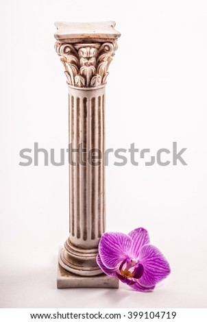 Classical column with gorgeous pink orchid isolated on white background. Image for spa, natural cosmetics and perfume. - stock photo