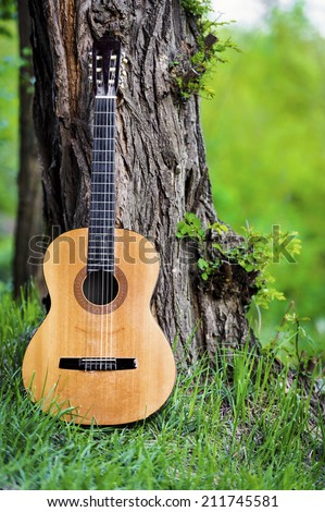Classical guitar leaning against tree in park - stock photo