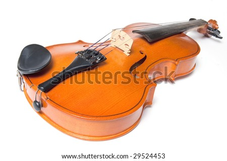 Classical violin close up isolated on white background - stock photo
