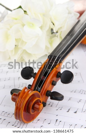 Classical violin  with flowers on notes - stock photo
