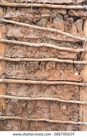 Clay and branches interior wall construction detail in Trinidad,Cuba. The wall is purposely uncovered for the enjoyment of tourists visiting the Spanish Colonial Village - stock photo