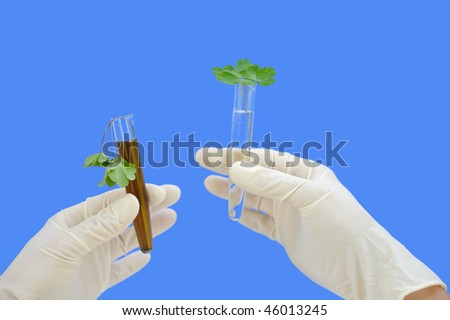 Clean and dirty water samples with fresh and wilted leaves - environmental concept