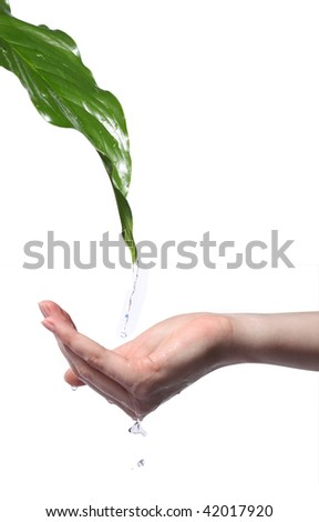 clean clear water, flowing down from  leaf  in a hand