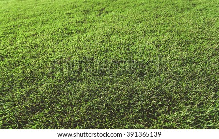 Clean empty football grass field , vintage tone - stock photo