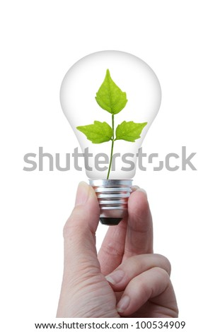 Clean environment concept ; lightbulb with leaves inside,