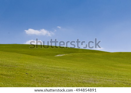 clean field of green grass under blue sky, horizontal landscape, holy ground in guarapiranga