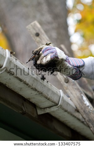 Clean Gutter Close Up a close up shot of a person cleaning the gutter.shallow depth of field - stock photo