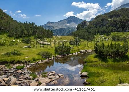 Clean Mountain River, Pirin Mountain, Bulgaria - stock photo