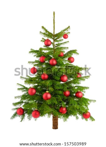 Clean studio shot of a Christmas tree decorated with red baubles, isolated on white - stock photo