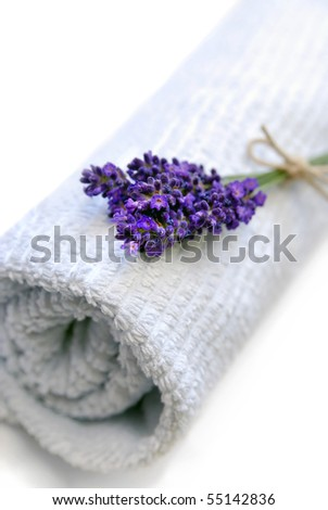 Clean towel with fresh lavender flowers - stock photo