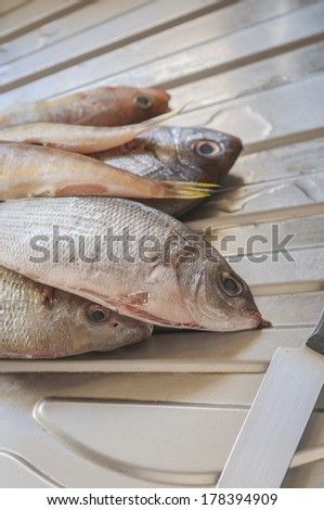 Cleaning fish several Mediterranean species - stock photo