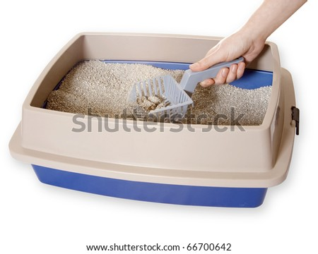 Cleaning Out Litter-box - stock photo