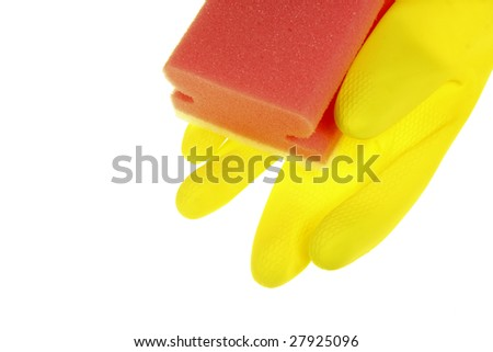 Cleaning Products: sponge glove
