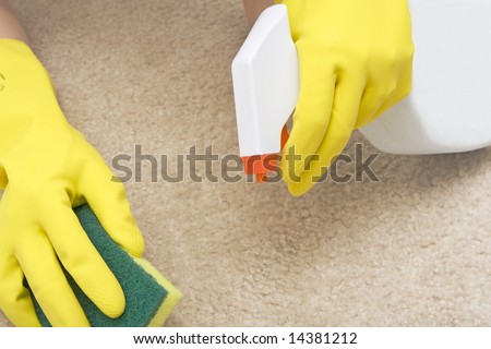 cleaning stain on a carpet with a sponge - stock photo