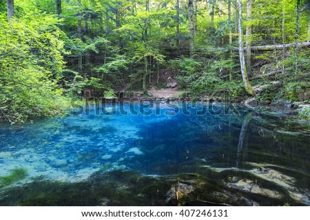Clear and beautiful water source in forest - stock photo