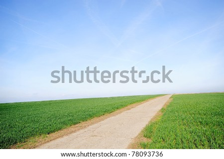 clear blue sky over farmland landscape. Panoramic picture with green fields and a rural country road. - stock photo