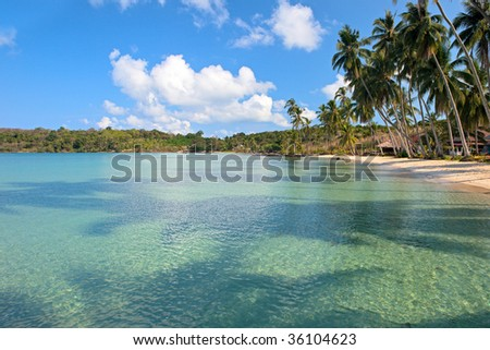 Clear blue water and beach