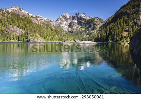 Clear calm blue lake with trees submerged in the water