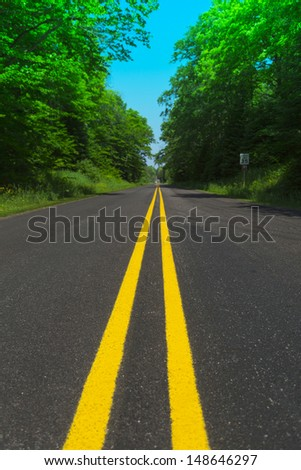 clear double yellow line road through forest in summer