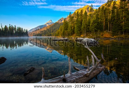 Clear lake with log in foreground in Grand Teton National Park - stock photo