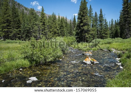 Clear Rocky Mountain Stream in Pioneer Mountains in Idaho - stock photo