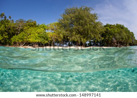 Clear, shallow water bathes a sandy beach on a tropical island in the Solomon Islands.  This area is found within the Coral Triangle and is high biological diversity. - stock photo
