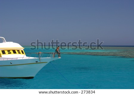 Clear Water - stock photo