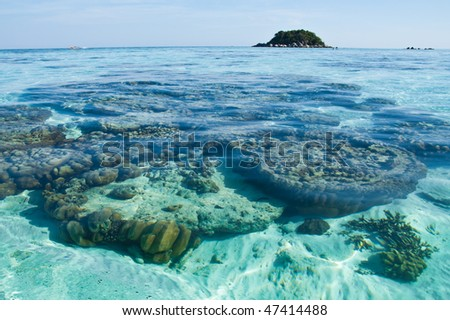 Clear water in Lipe island, south of Thailand