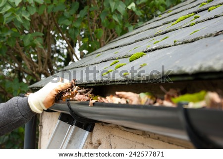clearing blocked gutter of autumn leaves by hand - stock photo