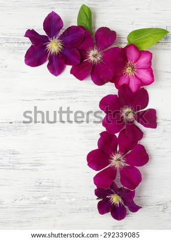 Clematis flowers with green leaves on wooden background.  - stock photo