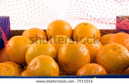 Clementines Open - stock photo