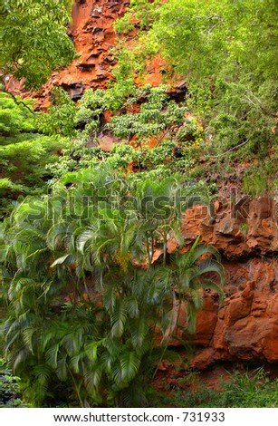 Cliff wall in jungle - stock photo