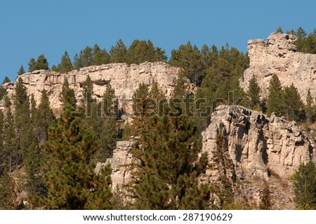 Cliffs and pine trees in Spearfish Canyon in Black Hills National Park, South Dakota - stock photo